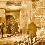 Abattage des éléphants du Jardin des Plantes