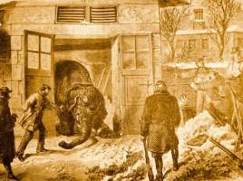 Abattage des éléphants du jardin d'Acclimatation à Paris en 1870