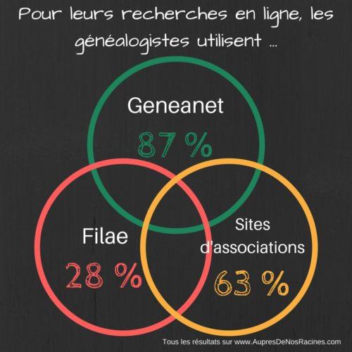 Les généalogistes et les recherches en ligne