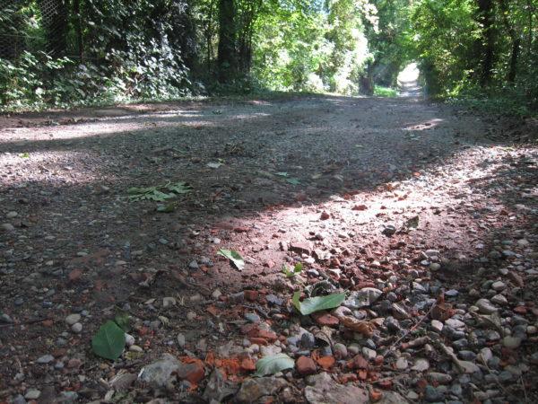 Débris de tuiles ou des briques sur le chemin des Chaufours à Chavot-Courcourt