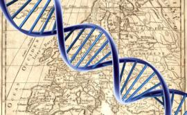 Test-ADN-Genealogie