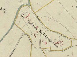 Extrait du plan cadastral de Tauxières-Mutry (source : AD51)